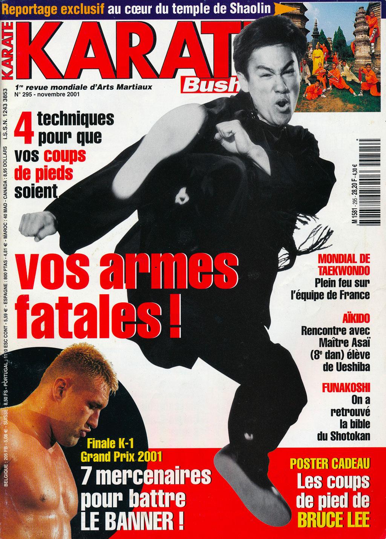 Jiu-jitsu bj penn